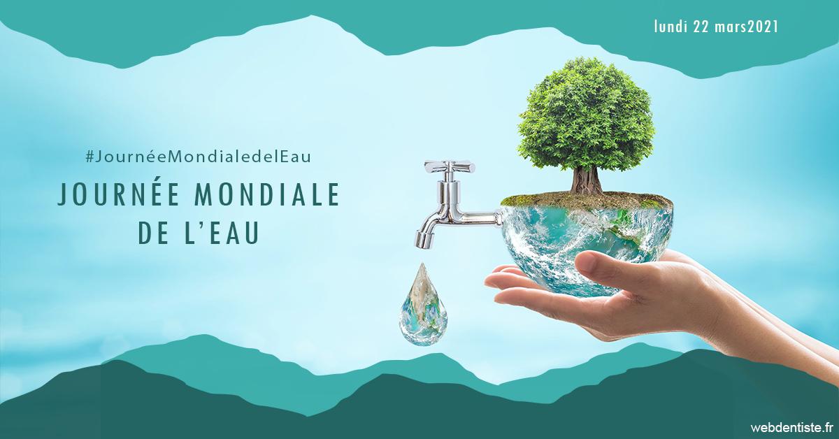 https://www.philippe-aknin-chirurgiens-dentistes.fr/Journée de l'eau 1